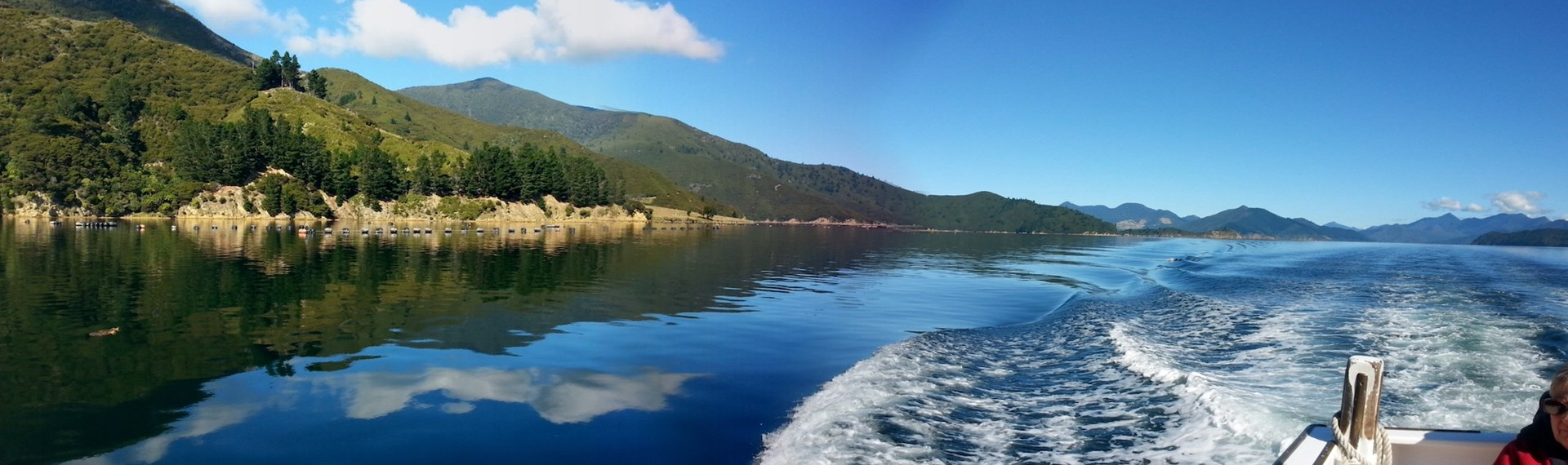 Panoramic view of the Pelorus Sound/Te Hoiere from behind boat with wake, during a Mail Run Cruise.